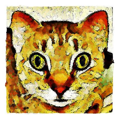 This Is My Surprised Face Kitty Art Print by Terry Mulligan