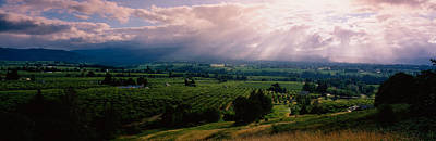 This Is Near The Hood River. It Art Print by Panoramic Images