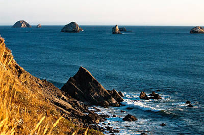 This Is Oregon State 1 - The Oregon Coast Art Print by Paul W Sharpe Aka Wizard of Wonders