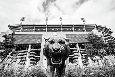 This Is Where The Tigers Play - Bw Art Print