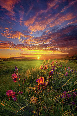 Photograph - This Life Is A Gift For Everyone by Phil Koch
