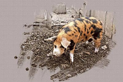 Digital Art - This Little Piggy by Mindy Newman