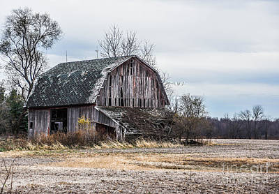 Photograph - This Old Barn by Grace Grogan