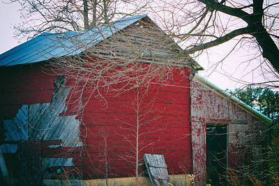 Photograph - This Old Barn by Roberta Byram
