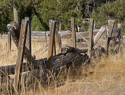 This Old Fence Art Print by Charlie Osborn
