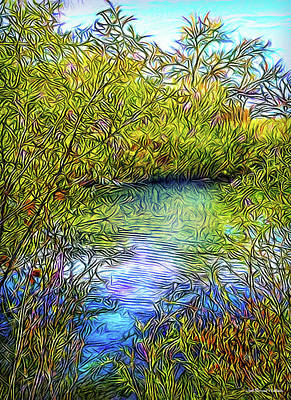 Digital Art - This Reflective Moment by Joel Bruce Wallach