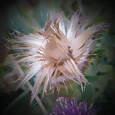Mixed Media - Thistle Abstract by Pamela Walton