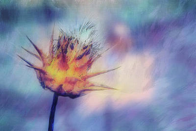 Herb Mixed Media - Thistle Beauty by Terry Davis
