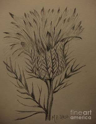 Drawing - Thistle Drawing by Maria Urso