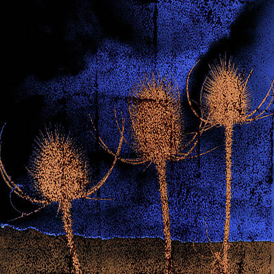Digital Art - Thistle by Julian Perry