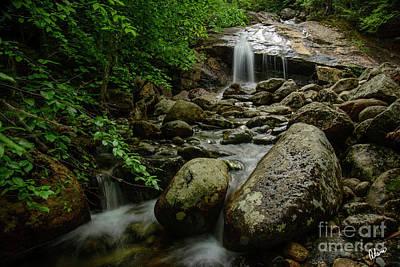 Photograph - Thompson Falls by Alana Ranney