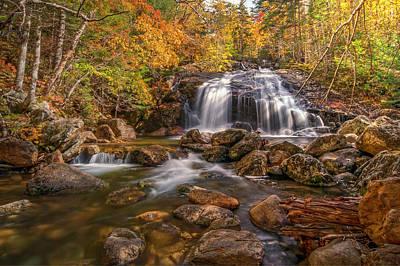 Photograph - Thompson Falls by Thomas Gaitley