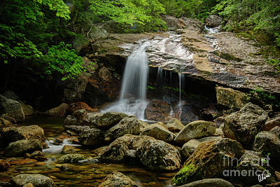 Photograph - Thompson Waterfall, New Hampshire by Alana Ranney