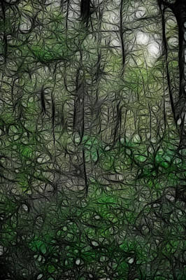 Walden Pond Photograph - Thoreau Woods Fractal by Lawrence Christopher