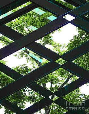 Photograph - Thorncrown Chapel Arkansas Architecture Detail by Lizi Beard-Ward