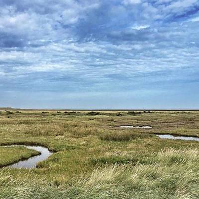 Wall Art - Photograph - Thornham Marshes, Norfolk by John Edwards