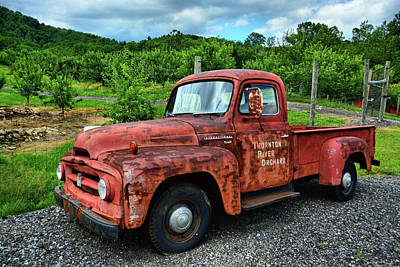 Photograph - Thornton River Orchard Workhorse by Ben Prepelka