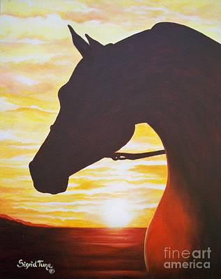Painting -    Thoroughbred Sunset by Sigrid Tune