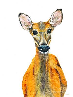 Painting - Those Deer Eyes by Jan Killian