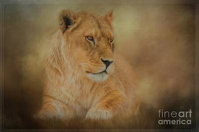 Lying Mixed Media - Thoughtful Lioness - Horizontal by Teresa Wilson