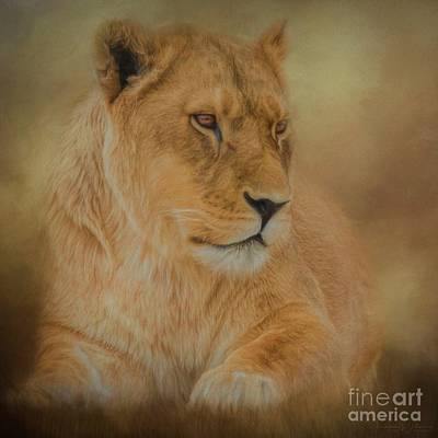 Mixed Media - Thoughtful Lioness - Square by Teresa Wilson