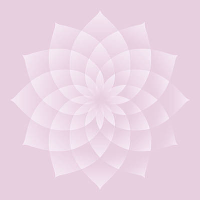 Digital Art - Thousand Petal Lotus In Pink by Attila Meszlenyi