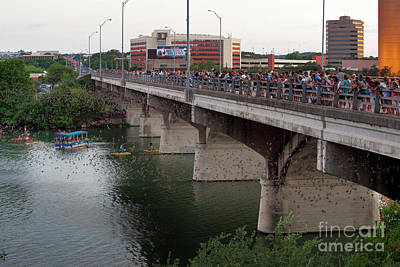 Graduation Sayings - Thousands of crowds gather to watch the worlds largest urban colony of Mexican free-tail bats  by Herronstock Prints