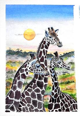 Three Giraffes    Sold Art Print