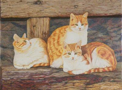 Petra Drawing - Three Amigos by Judi Honeychurch