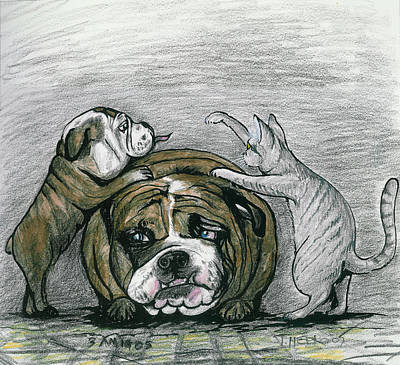 English Bulldog Drawing Painting - Three Amigos by Tom Hefko