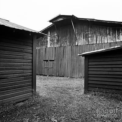 Photograph - Three Barns by Patrick M Lynch
