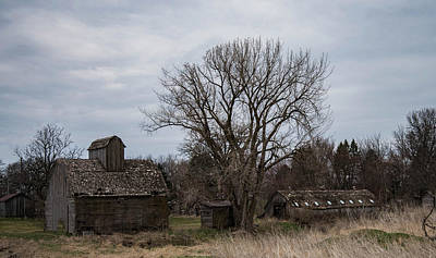Photograph - Three Barns by Wendy Carrington