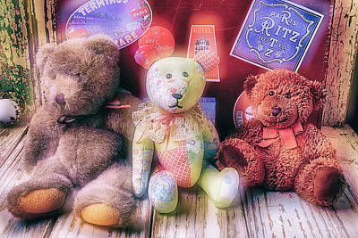 Photograph - Three Bears by Garry Gay