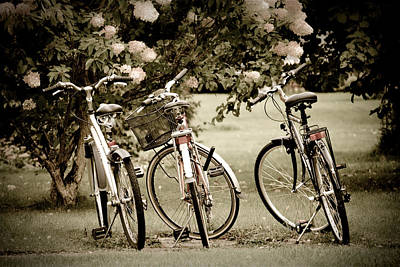 Soft Pink Photograph - Three Bicycles by Maggie Terlecki