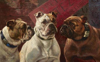Two Heads Painting - Three Bulldogs by Charles Boland