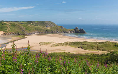 The Gower Photograph - Three Cliffs Bay The Gower South Wales Uk With Pink Flowers by Michael Charles