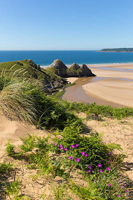 The Gower Photograph - Three Cliffs Bay The Gower Wales Uk With Ink Flowers by Michael Charles