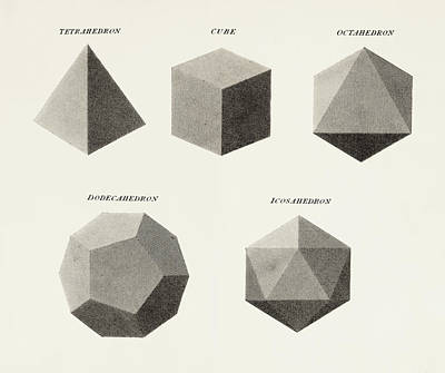 Geometrical Drawing - Three Dimensional Geometric Shapes by Vintage Design Pics
