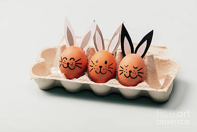 Photograph - Three Egg-bunnies Standing In An Egg Carton. by Michal Bednarek