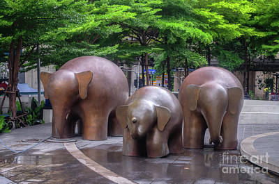 Photograph - Three Elephants by Michelle Meenawong