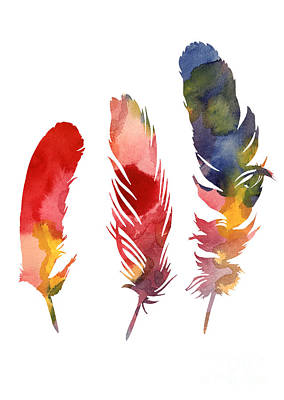 Three Feather Watercolor Poster Art Print