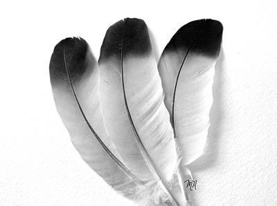 Three Feathers Art Print by Marsha Heiken