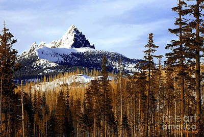 Three Fingered Jack Art Print