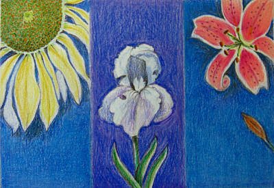 Art Print featuring the drawing Three Flowers by Patricia Januszkiewicz
