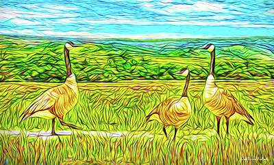 Digital Art - Three Geese - Farm In Boulder County Colorado by Joel Bruce Wallach