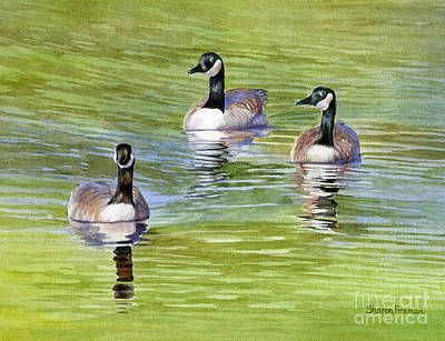 Three Geese With Pond Reflections Art Print by Sharon Freeman
