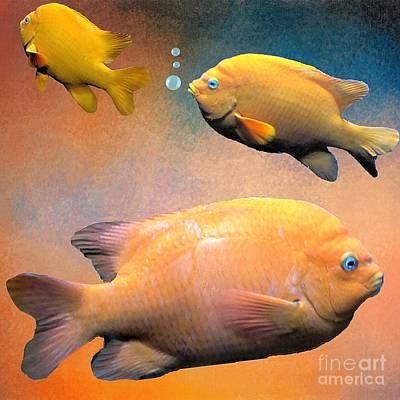 Photograph - Three Tropical Goldfish by Janette Boyd