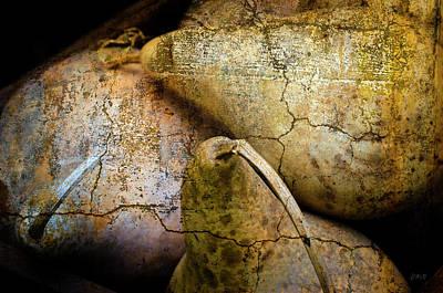 Photograph - Three Gourds by Dave Gordon