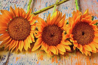 Three Graphic Sunflowers Art Print
