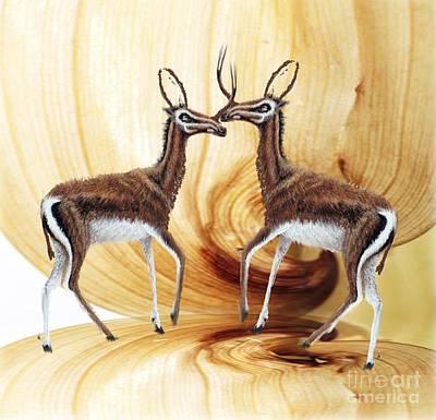 Just Desserts - Three Horn Antelopes by Belinda Threeths